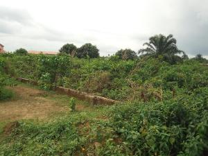 Land for sale Graceland school road Uyo Akwa Ibom