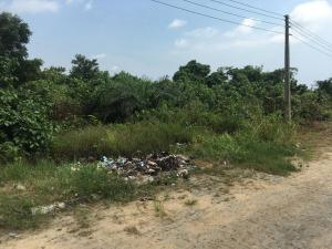 Residential Land Land for sale Ajayi Apata Estate, beside Crown Estate Crown Estate Ajah Lagos