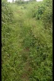 Land for sale Irokorkor community, Ekenwan barracks Oredo Edo