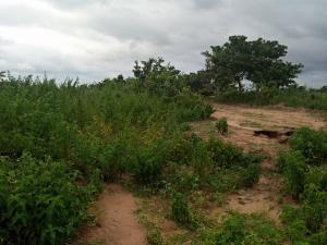 Residential Land Land for sale After the new dunamis headquarters  Lugbe Abuja