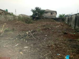 Land for sale bakare estate chevron Lekki Lagos
