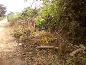 Land for sale  atan village along iseyin/ibadan  Ibadan Oyo