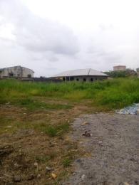 Land for sale IGBO AGBOWA, OLO-ODO Ebute Ikorodu Lagos