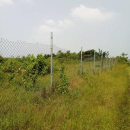 Mixed   Use Land Land for sale Monastery Road, Sangotedo Sangotedo Ajah Lagos