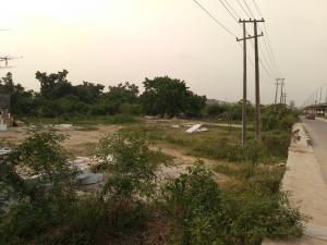Land for sale Between ifako and Ogudu, turning under the bridge to global impact church Ifako-gbagada Gbagada Lagos