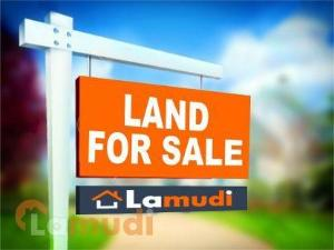 Land for sale Lekki Free Trade Zone Ibeju-Lekki Lagos - 1
