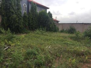 Mixed   Use Land Land for sale CMD Road Ikosi-Ketu Kosofe/Ikosi Lagos