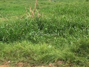 Land for sale   VGC Lekki Lagos