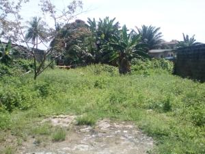 Land for sale Orange Gate Oluyole Estate Ibadan Oyo