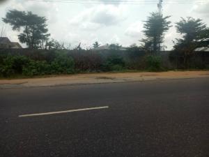 Land for sale Gbagada Oshodi Expressway Phase 1 Gbagada Lagos