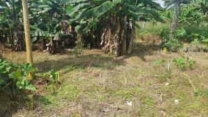 Mixed   Use Land Land for sale GRA, Benin City Oredo Edo