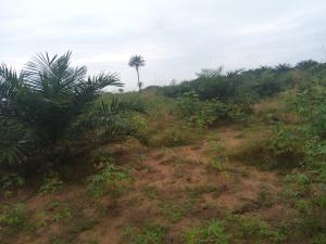 Mixed   Use Land Land for sale Umuekwunne in Ngor Okpuala LGA Owerri Imo