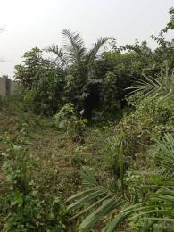Mixed   Use Land Land for sale ogunfayo Eputu Ibeju-Lekki Lagos