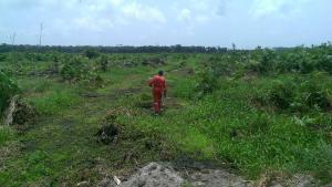 Land for sale  Monastery Road behind Shoprite Sangotedo, Sangotedo Ajah Lagos