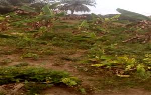 Mixed   Use Land Land for sale Mojoda  Epe Road Epe Lagos