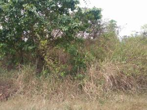 Commercial Land Land for sale Olowa Village off Ijebu Ode road Ibadan Oyo