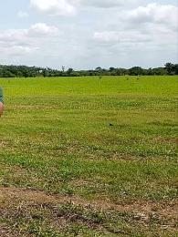 Land for sale Along osapa  Osapa london Lekki Lagos