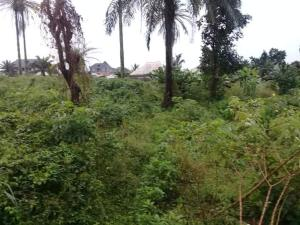 Residential Land Land for sale Iriebe  Oyigbo Rivers