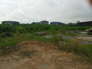 Land for sale Shomolu Shomolu Lagos