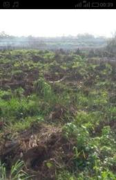 Land for sale Ago palace way Isolo Lagos