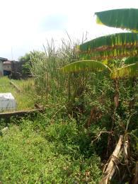 Mixed   Use Land Land for sale Enitinwa street, iyano ajangbadi  Ajangbadi Ojo Lagos