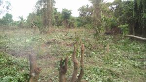 Residential Land Land for sale  idi ayunre ibadan   Ibadan Oyo