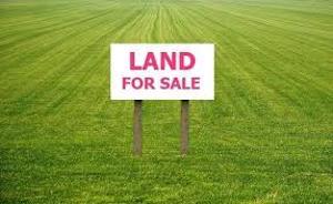 Commercial Property for sale back of chevron drive, alpha beach chevron Lekki Lagos