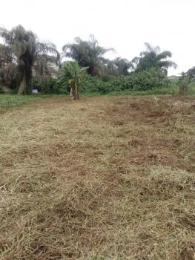 Mixed   Use Land Land for sale Powerline Oke-Ira Ogba Lagos