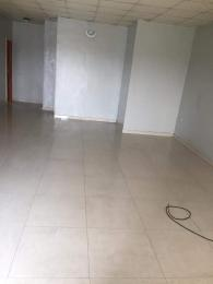 2 bedroom Flat / Apartment for rent Osborne Foreshore Estate Ikoyi Lagos