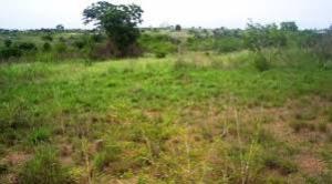 Land for sale Obuama Oyigbo Rivers