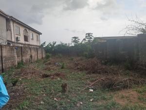 Mixed   Use Land Land for sale  peace estate Genesis Estate Aboru iyana ipaja  Ipaja road Ipaja Lagos