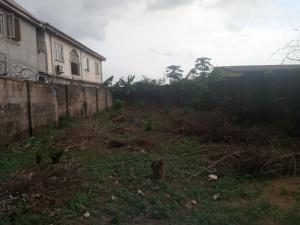 Land for sale peace estate Genesis Estate Aboru iyana ipaja  Ipaja Lagos