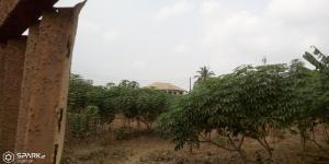 Mixed   Use Land Land for rent - Magboro Obafemi Owode Ogun