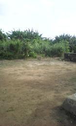 Residential Land Land for sale AMBASSADOR Obasanjo Farm Ado Odo/Ota Ogun