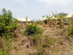 Residential Land Land for sale BCOS Quarters, near Olorunda market, Olorunda abaa  Akobo Ibadan Oyo