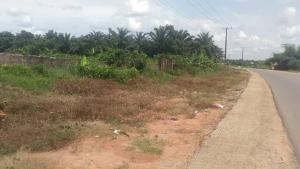 Residential Land Land for sale Okhoromi tarred road, Airport road benin city  Oredo Edo