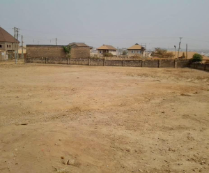 Mixed   Use Land Land for sale Elebu Oluyole Estate Ibadan Oyo - 0