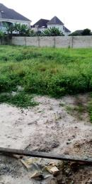 Mixed   Use Land Land for sale Obirikwere by airport rd Obio-Akpor Rivers