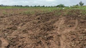 Land for sale Akpuoga Nike Enugu Enugu