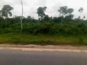 Land for sale Obiri-ikwere Airport road Obio-Akpor Rivers