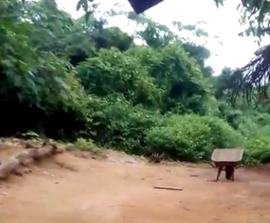 Land for sale Obafemi Owode, Behind Yotomi Estate Obafemi Owode Ogun