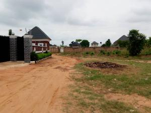 Mixed   Use Land Land for sale Isuaniocha  Awka North Anambra