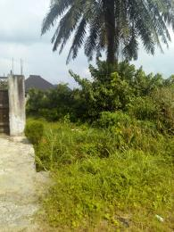 Residential Land Land for sale Pearl Gardens, Shell Estate  Eliozu Port Harcourt Rivers