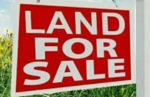 Land for sale Badore Badore Ajah Lagos - 0