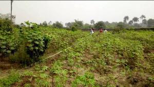 Serviced Residential Land Land for sale New Road, Otor Udu Udu Delta