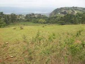 Mixed   Use Land Land for sale cooperative villa Badore Ajah Lagos