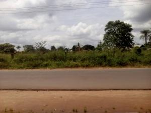 Land for sale facing the express road Owerri Imo - 0