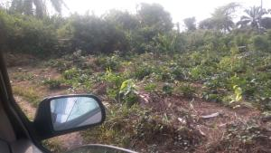 Residential Land Land for sale Atali Stream View Estate Phase 2 Atali Port Harcourt Rivers