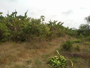Commercial Land Land for sale Idiamu, Ido Ibadan Oyo