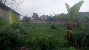 Commercial Land Land for sale Eneka Road, By Army Range  Eneka Port Harcourt Rivers